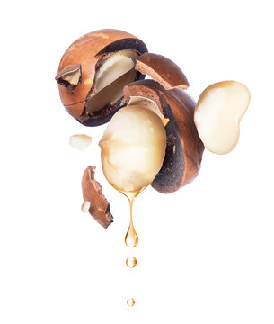 Oil of macadamia nut is dripping on a white background