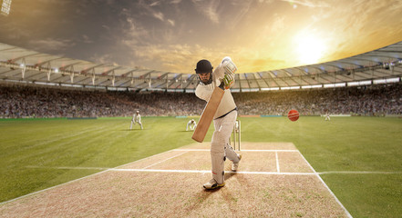 Young sportsman strikes the ball while batting in the cricket field