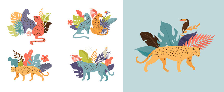 Tropical exotic animals and birds - leopards, tigers, parrots and toucans vector illustration. Wild animals in the jungle, rainforest
