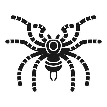 Tarantula spider icon. Simple illustration of tarantula spider vector icon for web design isolated on white background