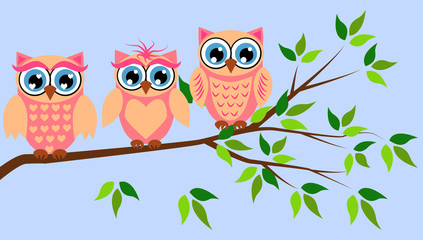 Poster Uilen cartoon Cute girl owls. Baby showers, parties for baby girls.