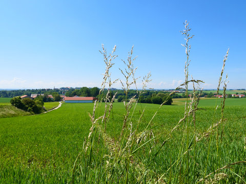 Bayern - im Norden von Dachau