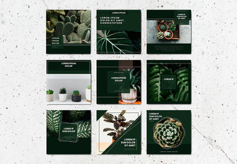 Social Media Post Layouts with Green Accents and Plant Imagery
