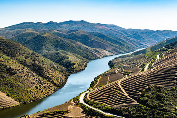River Douro next to the mouth of the river Coa Wall mural