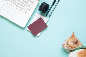 Flat lay of modern workspace desk with laptop, passport, camera lens and cat on blue colour. Travel, hobby and lifestyle concept
