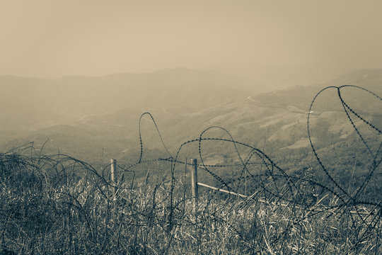 landscape Tangled barbed wire in the Vietnam War