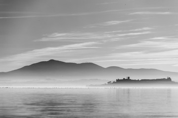 Beautiful view of Trasimeno lake at sunset with birds on water and Castiglione del Lago town