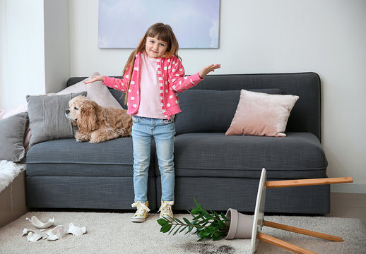 Little girl with dog, dropped houseplant and broken piggy bank on carpet