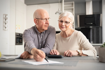 Senior couple discussing investment