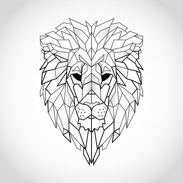Lion Line Drawing Photos Royalty Free Images Graphics Vectors Videos Adobe Stock Add a pair of lines that defines the shape of the inner end of the eye that run slightly down the snout and join some distance away from. lion line drawing photos royalty free