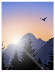Image landscape. Brightly sun in mountains and bird in sky.