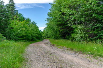 Dirt Road in Rural Nova Scotia