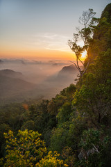 Vertical picture of an amazing sunrise over the green rainforest