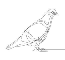 Photo on textile frame One Line Art Pigeon Bird One Continuous Line Vector Graphic