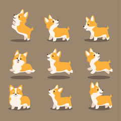 cute corgi dog vector illustration set