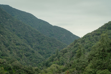 View across tree-covered mountain landscape in Southern California on an overcast day