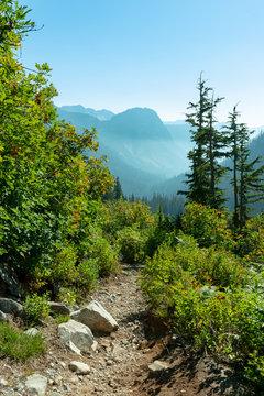 Source Lake trail in Washington, USA