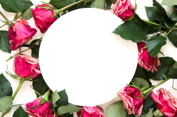 Flowers composition. Frame made of rose flowers on white background. Flat lay, top view, copy space. - Image