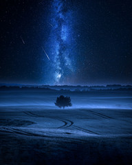 Milky way over filed with one tree in summer