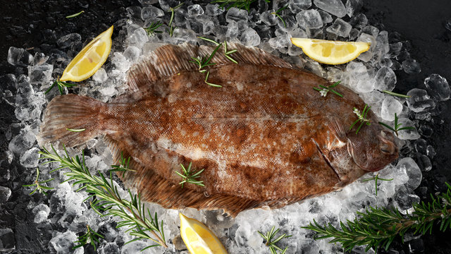 Raw lemon sole fish on ice with herbs and lemon wedges