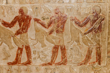 Ancient egyptian paintings and hieroglyphs carved on the stone wall