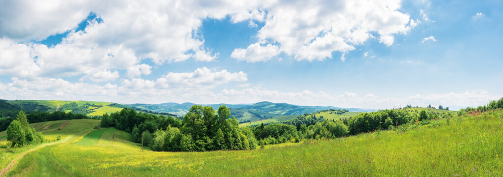 panorama of beautiful countryside in summer. wonderful landscape in mountains. rural fields and grassy meadows. road down the hill in to the  distant valley through forest. clouds on the blue sky