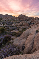 Soft sunset light over rocky landscape of California's Joshua Tree National Park