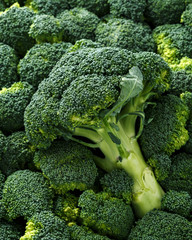 Healthy Fresh Green raw Broccoli. background, texture.