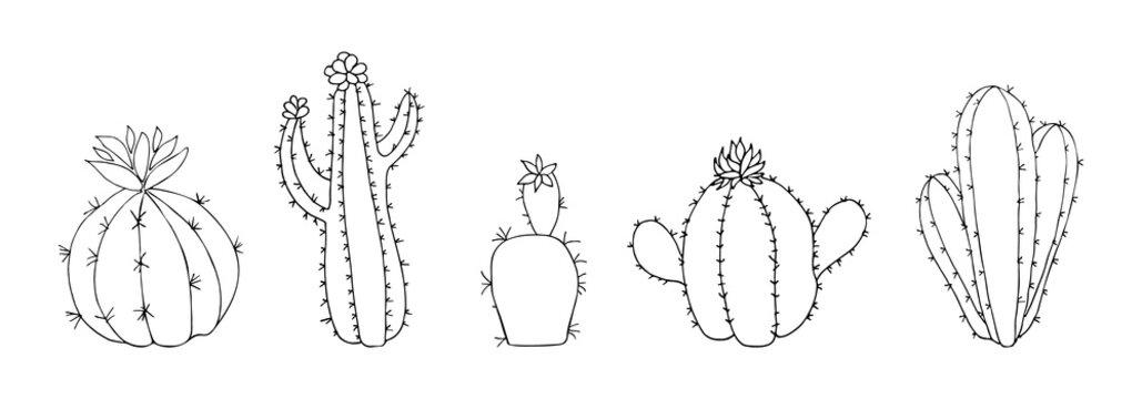 Set of cartoon hand drawn funny cactus. Doodle dessert flower vector illustration. Home plant icon
