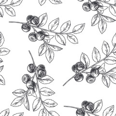 Vector vintage seamless floral pattern with blueberry isolated on white. Hand drawn botanical texture with forest berries in engraving style