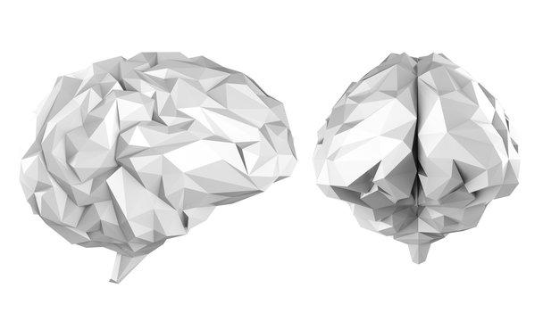 Grey polygonal brain