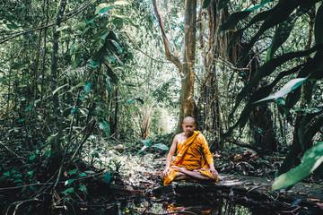Buddist monk made meditation in deep forest
