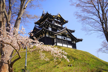Takada Castle Cherry Blossoms, Joetsu ciry, Niigata, Japan