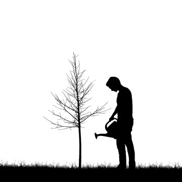 Realistic illustration with silhouette of a gardener man with watering can. Lawn and young tree without leaves, isolated on white background, vector