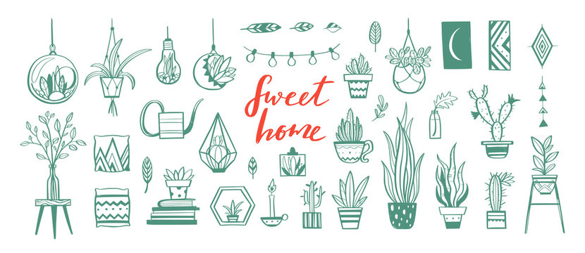 Home decor and House plants vector hand drawn set. Home decorations and interior design elements.Isolated boho and scandinavian cartoon sketches