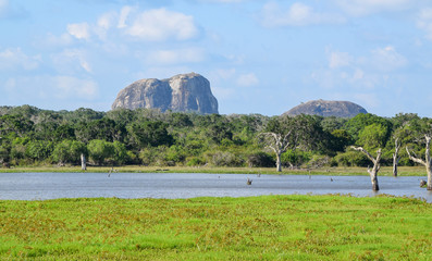 Impression of Sri Lanka