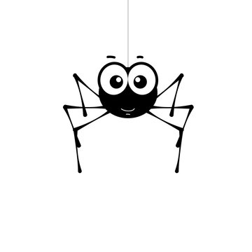 Smiling small spider