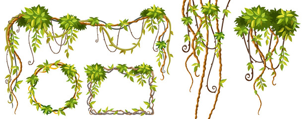 Liana branches and tropical leaves. Set game elements plants of jungle and cartoon frames with space for text. Isolated vector illustration on white background.