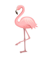 Cute animal, peach pink flamingo. Cartoon animal character design. Flat vector illustration isolated on white background. Flamingo standing on one leg
