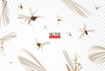 Insect mosquito, gnat and pest illustration for repellent oil, spray and patches ads, poster. Flying mosquitoes flock in air isolated promo. Viruses and diseases spreading medical vector concept.