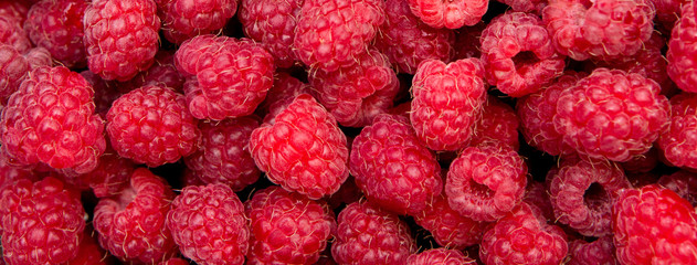 Background from fresh raspberry berries, close up