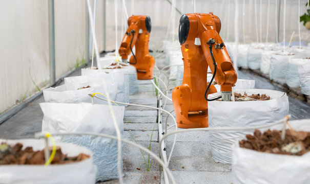 Agricultural technology robot automatic soil inspection farm eco plants organic trees