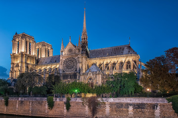 Fototapete - Cathedral Notre-Dame in Paris