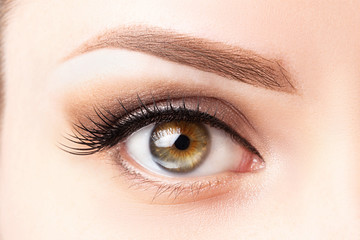 Female eye with long eyelashes, beautiful makeup and light brown eyebrow close-up. Eyelash extensions, lamination, microblading, cosmetology, ophthalmology concept