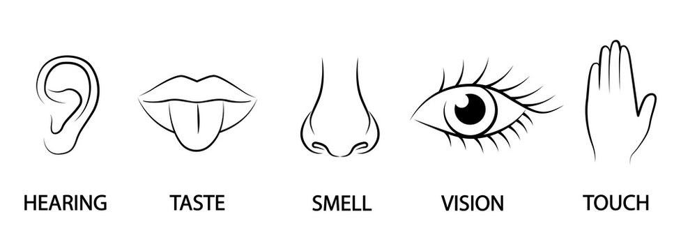 A set of five human senses. Ear, mouth, nose, eye, hand. Hearing, taste, smell, sight and touch.