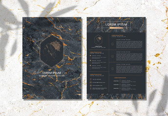 Marble Resume Layout with Gold Accents