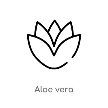 outline aloe vera vector icon. isolated black simple line element illustration from beauty concept. editable vector stroke aloe vera icon on white background