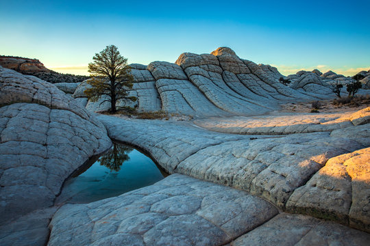 White Pocket in Vermillion Cliffs, USA