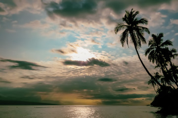 Vintage style tropical landscape with palm trees, sunset over the sea, Hawaii, USA