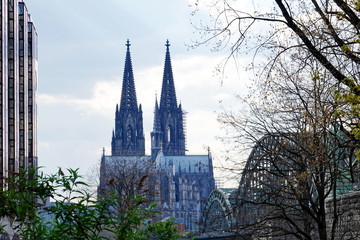 Cologne cathedral View from the other side of the river